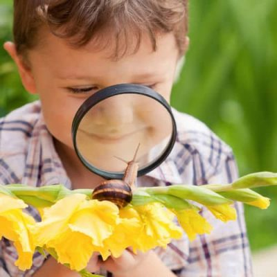 Child viewing snail with magnifying glass